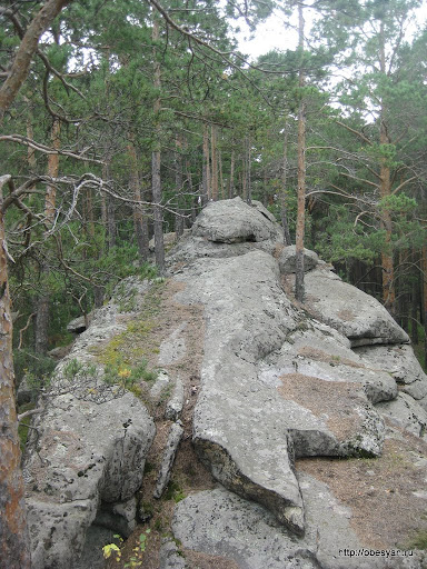 Индюк-камень