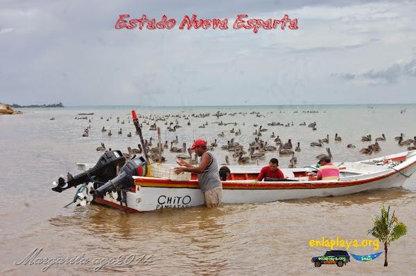 Playa Barrancas, Estado Nueva Esparta, Macanao