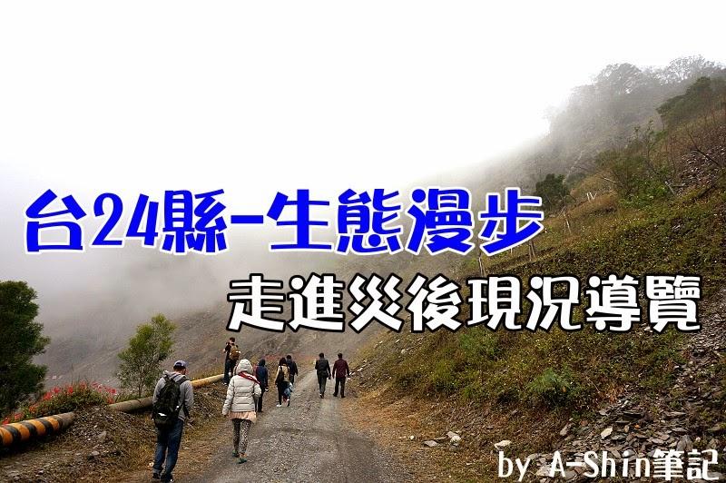 台24線生態漫步|雲霧繚繞台24線,漫步在這裡不輕鬆,霧大外,還得小心落石…