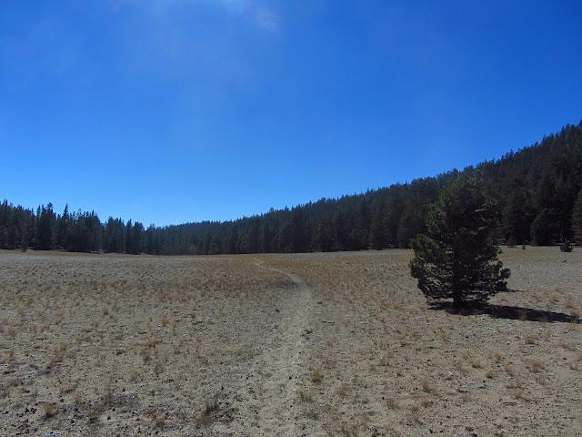 dry, flat meadow