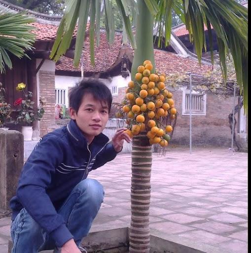 Quynh Ha Photo 17