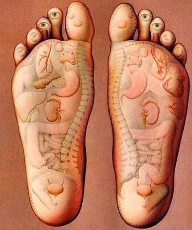 Phản chiếu các bộ phận lên bàn chân