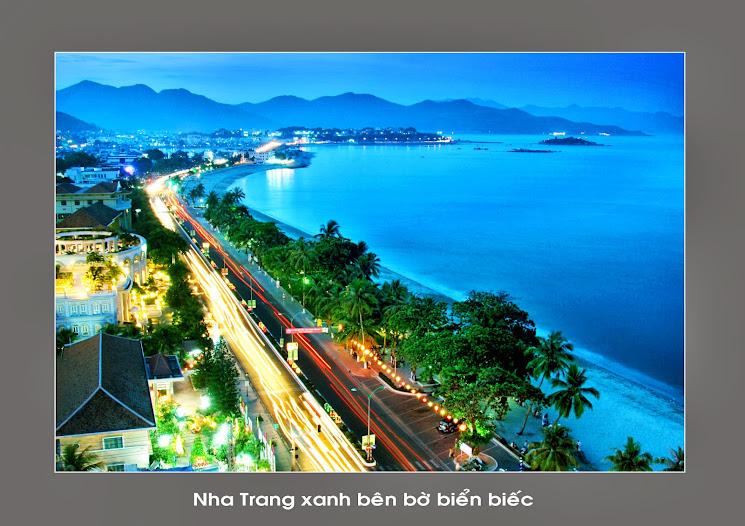Bò biển Nha Trang