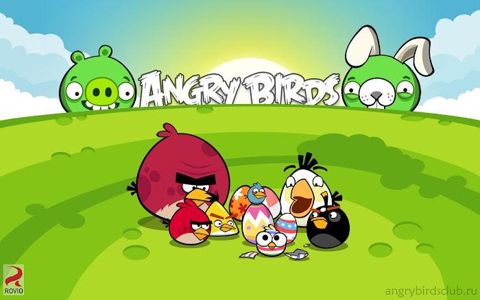 Hình nền về những chú chim điên trong Angry Birds - Ảnh 20