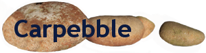 Carpebble-logo