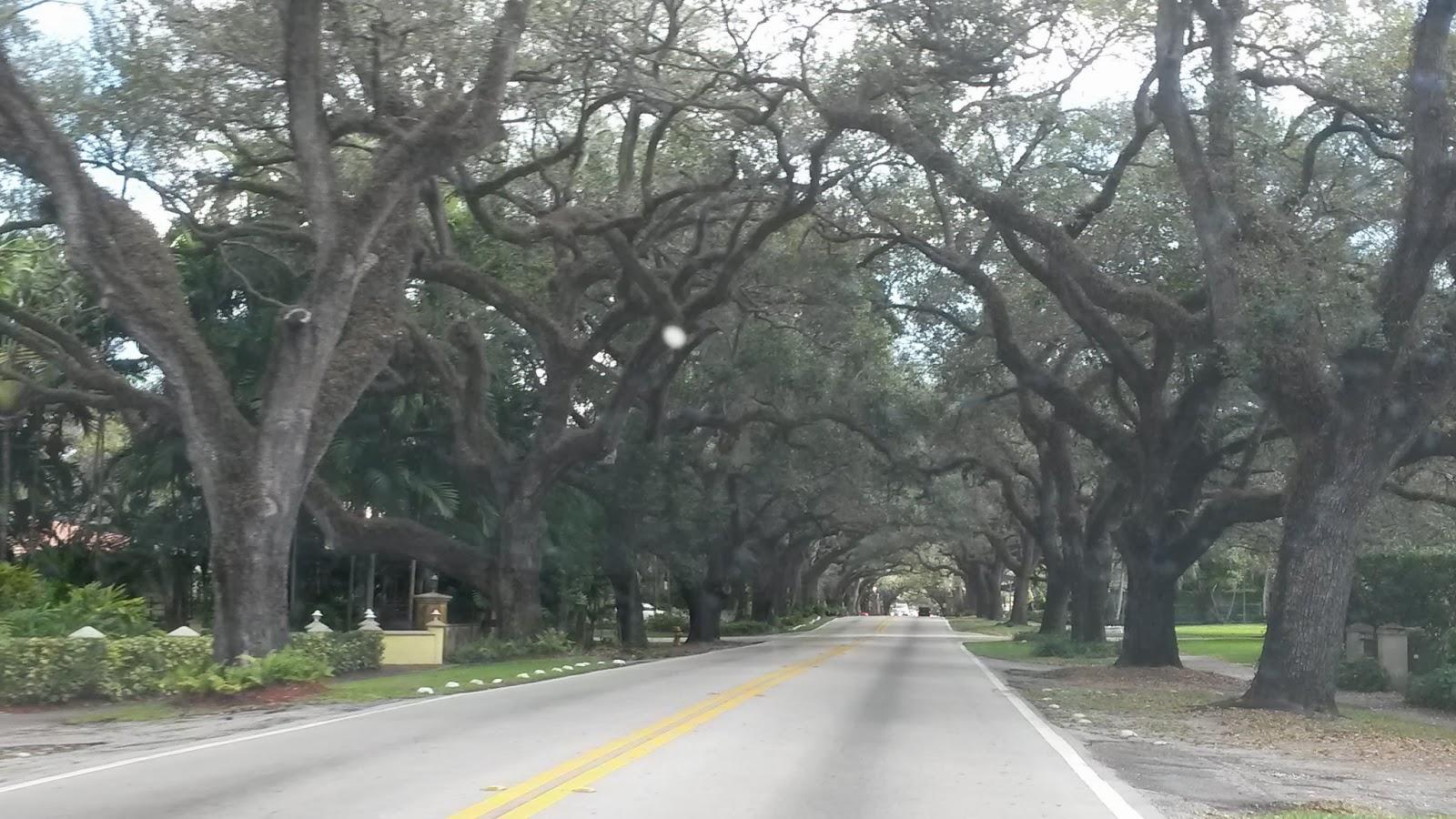 Merrick House, Coral Gables, Miami, Florida, Elisa N, Blog de Viajes, Lifestyle, Travel