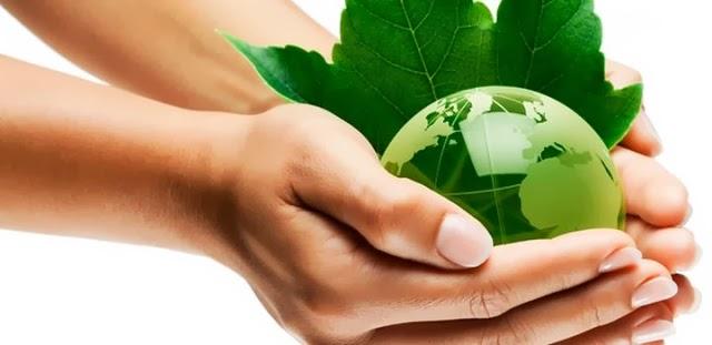 Negocio Rentable: productos naturistas