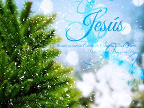 Jesús - Se llamará su nombre admirable