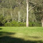 creekside campsite (6280)