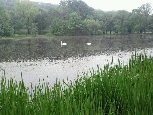 Tibbetts Brook Park, 355 Midland Ave, Yonkers, NY 10704, United States