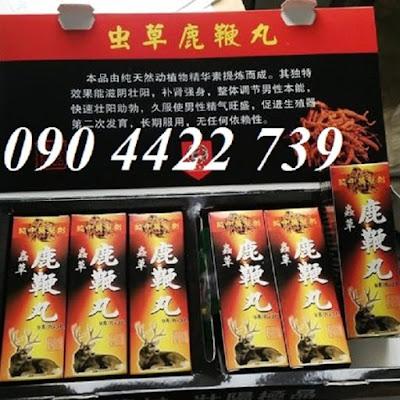 Trung Thảo Lộc Nhung hưu Tây Tạng - thuốc cường dương