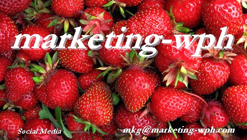 Marketing-wph. Gestionamos Redes Sociales.