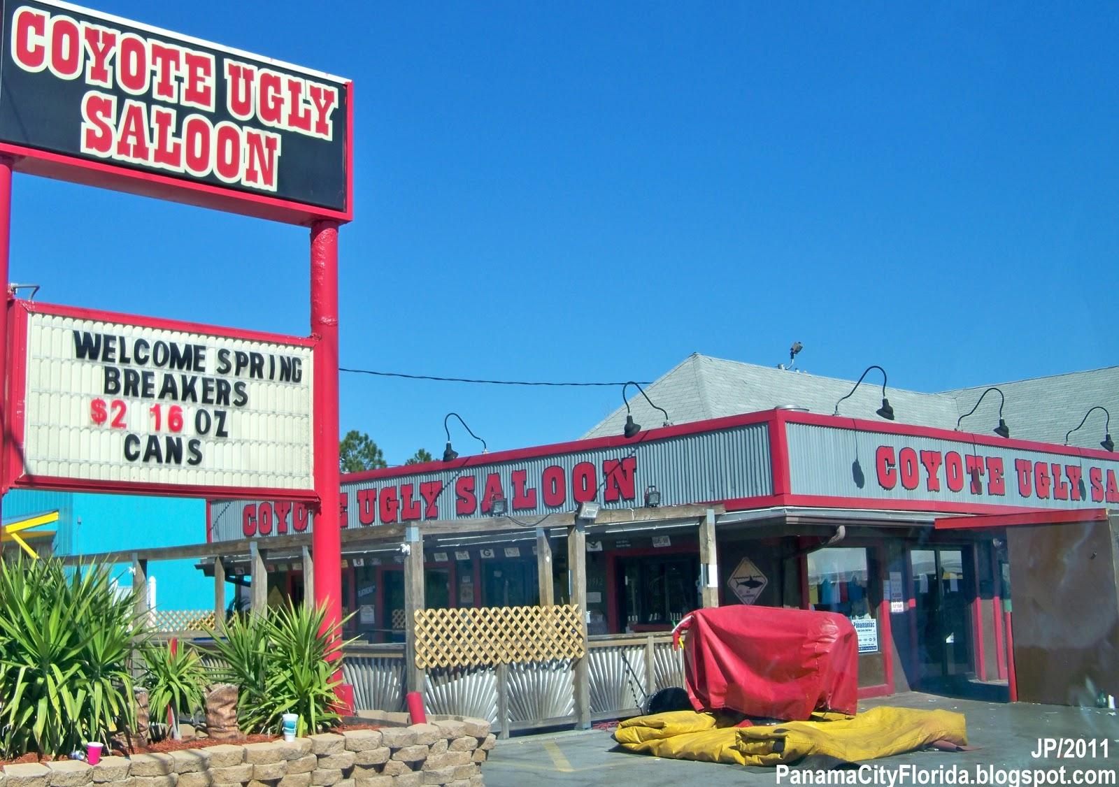 Furniture stores panama city beach fl - Coyote Ugly Saloon Panama City Beach Florida Front Beach Road Coyote Ugly Saloon Bar Panama City Beach Fl