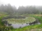 A small lake before Bass Lake