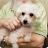 Maureen Doig Moore avatar image