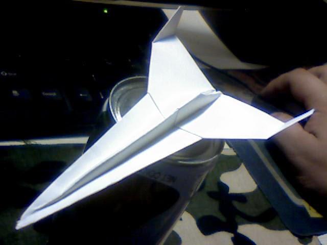 Wing 31