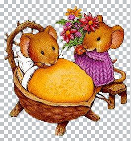 !!!!!!_Two-Cute-Mice-TUB-TR.jpg