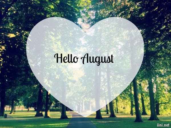 1001 bài thơ Tháng 8 hay, tình thơ tháng Tám mùa Thu mới nhất