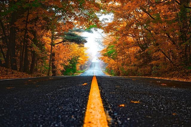 con đường Mùa Thu thật đẹp