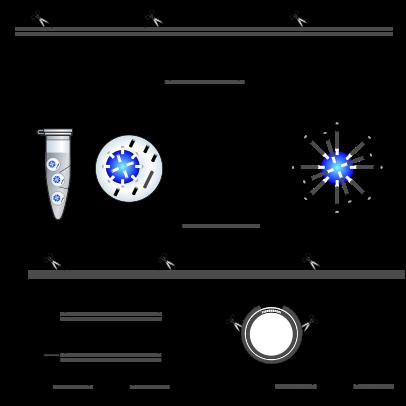 SOLiD-Plattform.