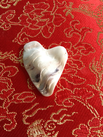 Heart-shaped seashell by Sylvia Wright
