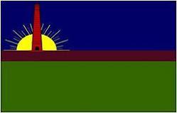 Bandera del Municipio Diego Ibarra