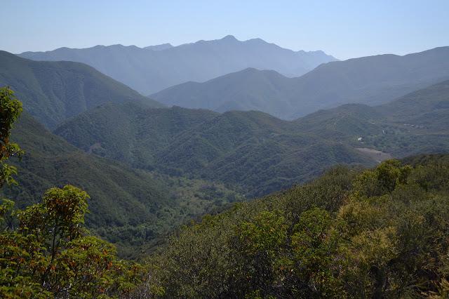 distant coastal mountains