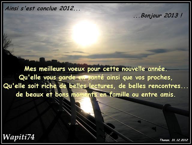 Voeux 2013 Voeux2013