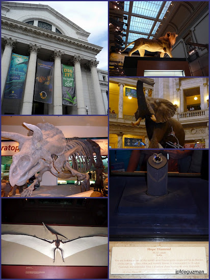 National Museum of Natural History