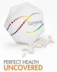 Laminine: Mengenal Diabetes Melitus