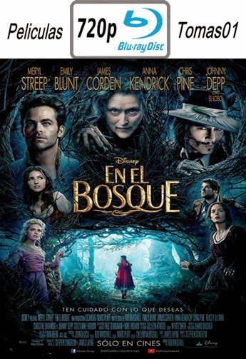Into The Woods (En El Bosque) (2014) BRRip 720p