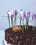 crepe paper crocuses ( and a tiny nest made of phyllo dough!)