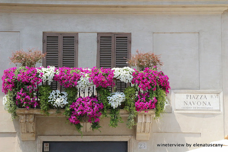 piazza navona, piazza navona rome, piazza navona roma, roma, roma must see, piazza roma, piazza, più bella piazza, bellissima piazza,