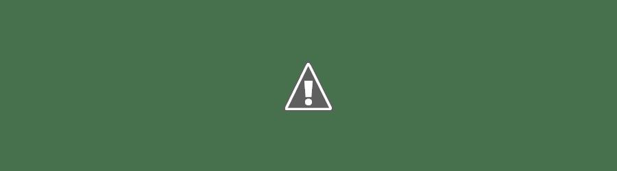 Raising 4 Dinosaurs