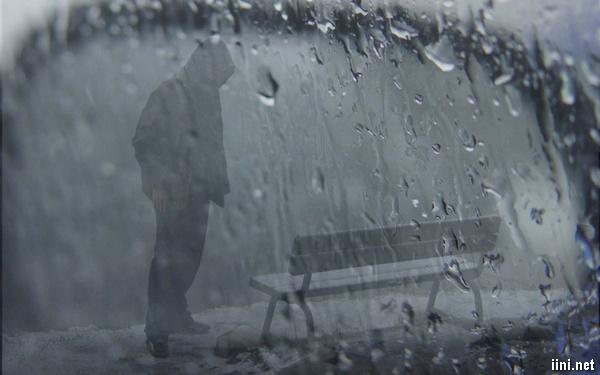 ảnh ghế đá buồn trong mưa