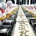 Đơn hàng chế biến thủy sản cần 9 nữ làm việc tại Wakayama Nhật Bản tháng 06/2018