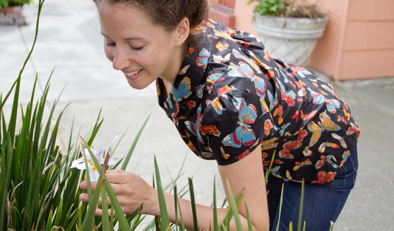 Black Bawaiian Victoria picks Flower