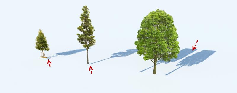 การกำหนดค่า Material ของต้นไม้แบบ 2D ให้มีความโปร่งใส Vraytree12