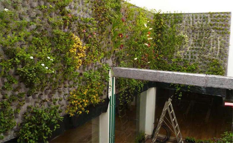 Jardín vertical Argentina