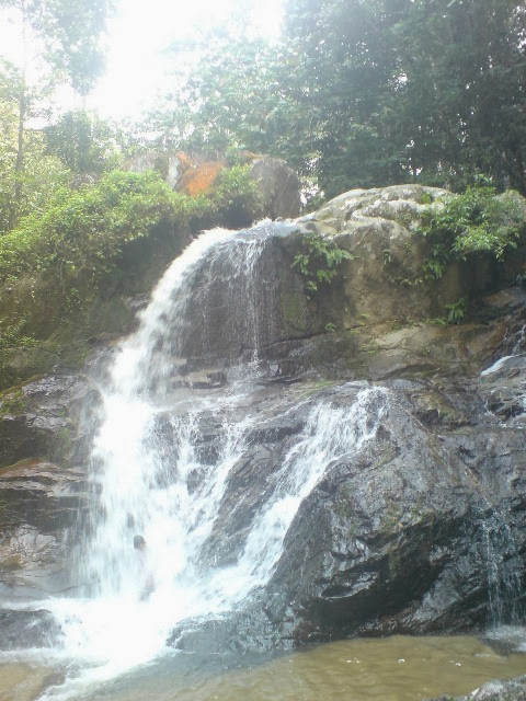 Hutan-Lipur-Jeram-Tengkek-Recreational-Forest