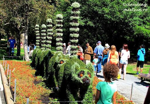 expozitie sculpturi vii la gradina botanica