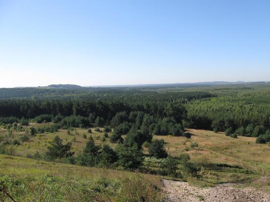 Pustynia od strony miejscowości Klucze
