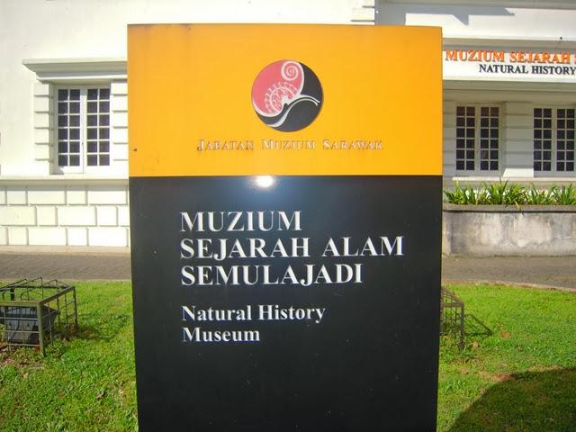 Muzium-Sejarah-Semulajadi-Natural-History-Museum
