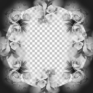 DS-rose.jpg