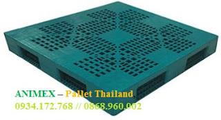 Pallet nhựa cao 200mm Thái Lan