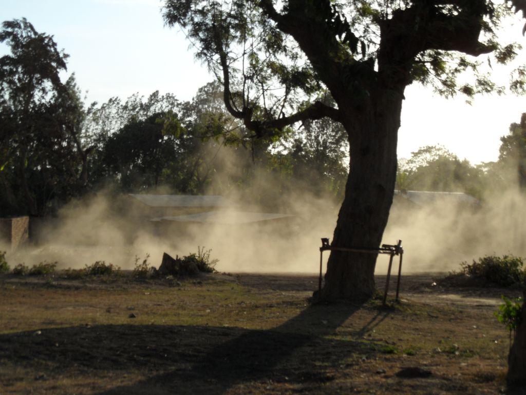 Tozlu Tanzanya