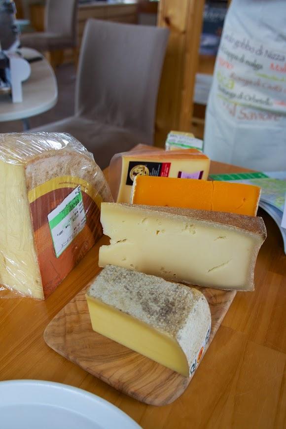 テイスティングするチーズ
