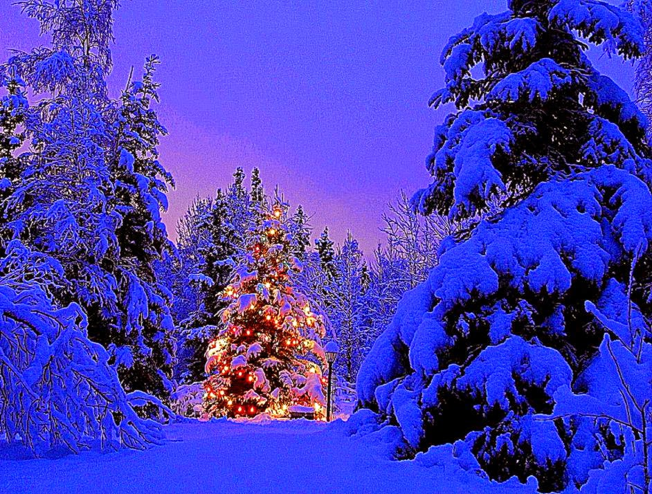 Top 24 Best Free Hd Christmas Wallpapers: Winter Holiday Scenes Wallpaper