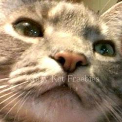 Krazy Kat Freebies