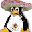 Ramon Alberto Aguiar Matínez avatar image
